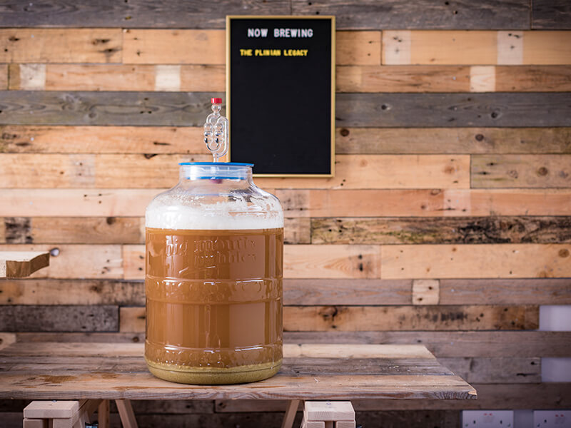 How to make amazing IPA in 8 easy steps
