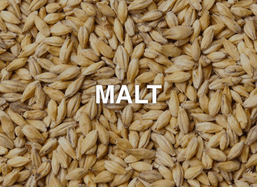 Ingredients_Malt